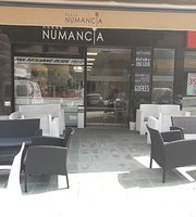 Nueva Numancia