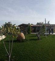 Troia Hisar Cafe Restaurant