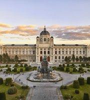 10 NAJLEPŠÍCH atrakcií v Viedni - TripAdvisor 3555d4e127a