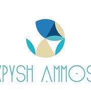 Chrysi Ammos