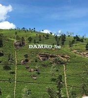 Damro Labookellie Tea Lounge