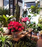PlantShed Cafe 87th Street
