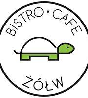 Bistro Cafe Zołw