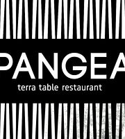Pangea Terra Table