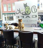 DigiBeet en Katten Café