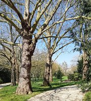 Parc De Maurepas Rennes 2020 All You Need To Know Before You