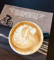 Vitesse Coffee & Cycling