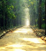 THE 10 BEST Parks & Nature Attractions in Bihar - TripAdvisor