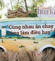 Hoa Lua Chay