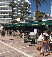 The Banana Tree Bar Marbella
