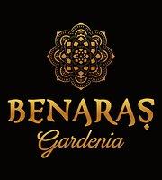 Benaras Gardenia