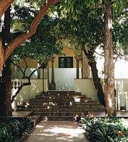 Mediterrace Garden