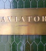 Aviator Danforth
