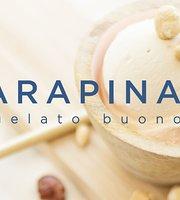 Carapina 26 - Il gelato buono