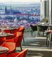 Aureole Restaurant