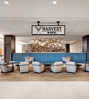 Harvest & Reel