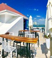 The 10 Best Restaurants Near Dodo In Panama City Panama