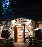 A Platan Etterem