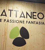 Gelateria Cattaneo 3.0
