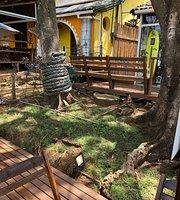 Açaí e Loja Noronha Roots