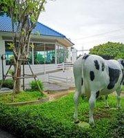 Dairy Hut