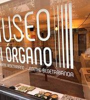 Museo del Órgano