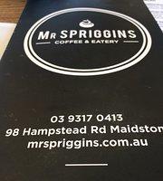 Mr Spriggins