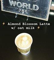 Daily Spark Coffee