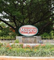 Mapro Garden, Factory and Food Park