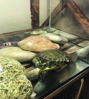Crayfish&Eclairs
