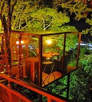 San Lucas Cena en la copa de los árboles