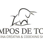 Campos de Toro