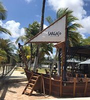 Sargaco Beach Lounge