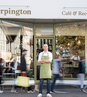 the Orpington