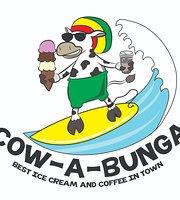 Cow-A-Bunga Ice Cream & Coffee