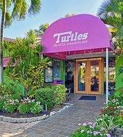 Turtles On Little Sarasota Bay