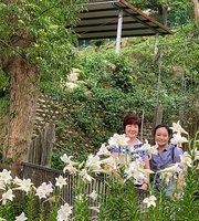 貓空 山中茶 - 景觀餐廳