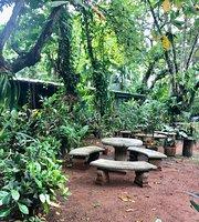 Mamá Jackie's Garden Bistró & Mangroove Bar