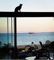 Panorama Cafe Bar