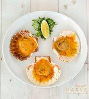 Harvest Kitchen & Bar