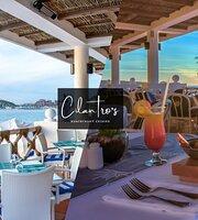 Cilantro's