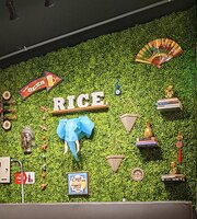 Rice Republic Panama