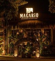 Macario | Contemporary Mexican Kitchen