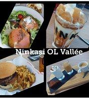 Ninkasi OL Vallée