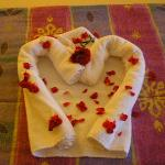 towel the maids created for  us