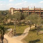 Disney's Animal Kingdom Lodge Photo
