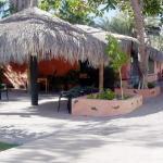 Foto de Iguana Inn