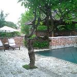 Garden villa and pool.