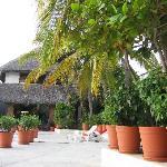 Gardens & Pool at Villas Paraiso
