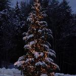 This snowy, romantic Vermont winter scene greeted us as we arrived at the Stone Hill Inn.